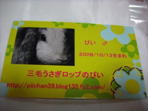 081_20111130072050.jpg