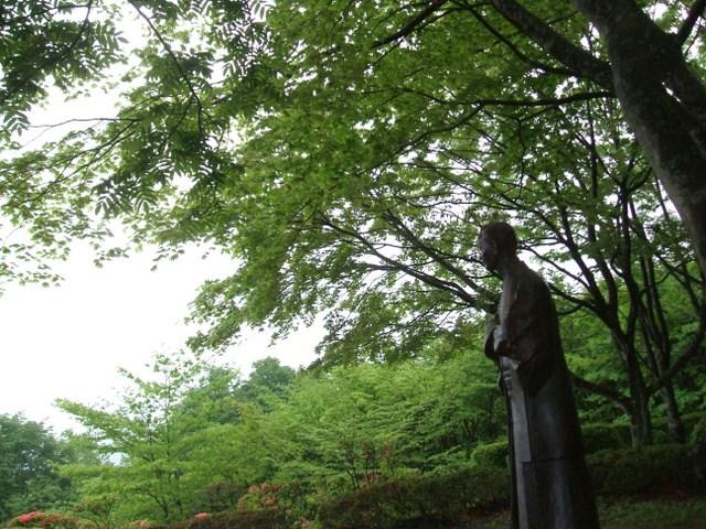 iwatama-t1.jpg