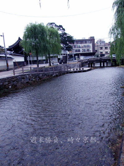 9000_2_furukawa2.jpg