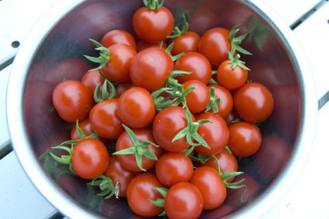 tomatoinbowl.jpg