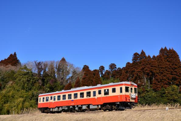 2013年1月23日 いすみ鉄道いすみ線 城見ヶ丘~上総中川 キハ52-125