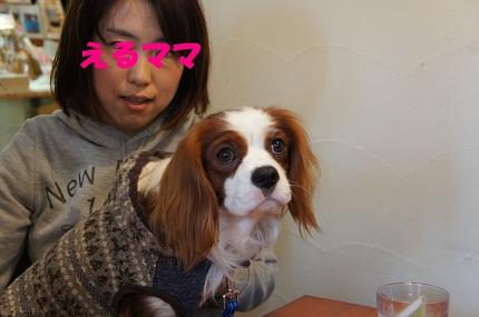 嵐丸 2013.1.12-10