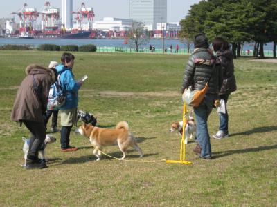 shiokaze-3-15-1.jpg