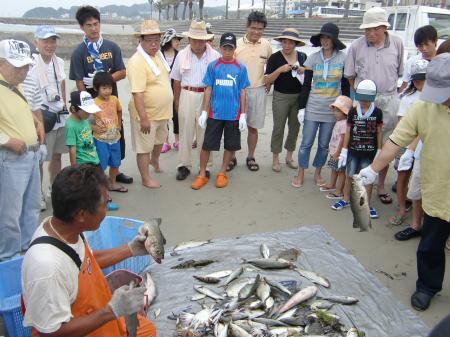とれたいっぱいの魚