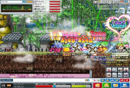 Maple100701_230117_convert_20100704193941.jpg