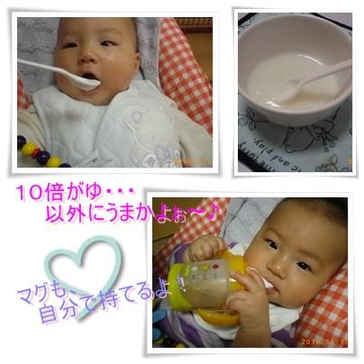 2010-11-19-01.jpg