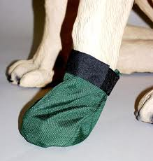 dog boots2