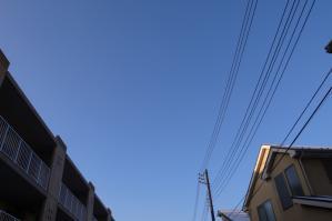RIMG3824.jpg