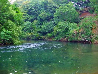 My Slow Fishing Plan + Stream ...