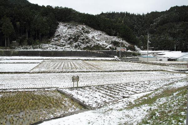 odaShogatsu01