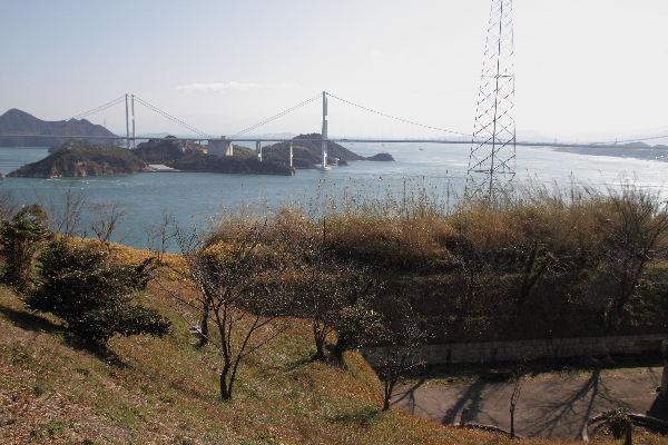 oshimaTybushikisyo02
