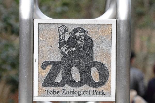 TobeZoo03