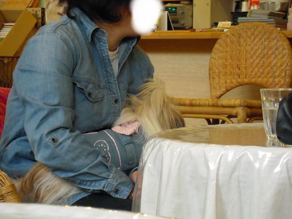 抱っこ大好き  2/5