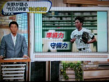 絵日記9・9ヤノスポ6
