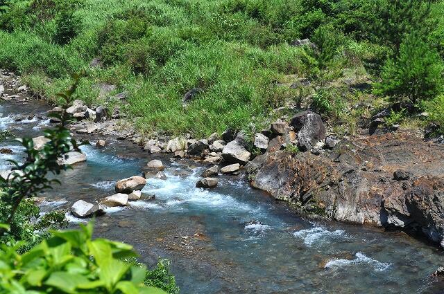 できれば泳ぎたい川