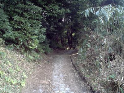 rich plum-山道。。
