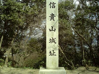 rich plum-石碑