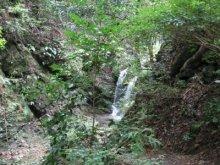 rich plum-御主殿の滝