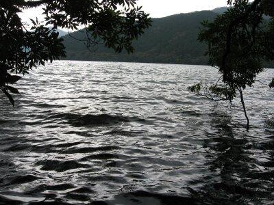 rich plum-湖畔