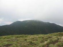 rich plum-神山