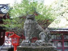 rich plum-狛犬