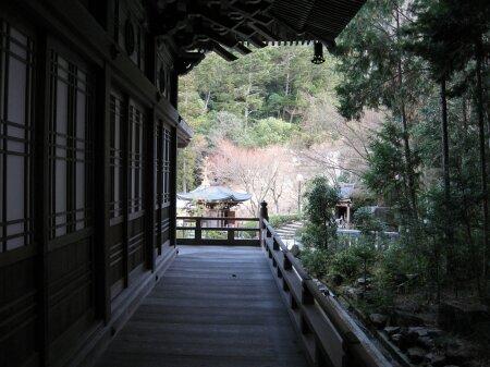 rich plum-お寺