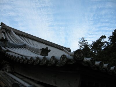rich plum-屋根と空