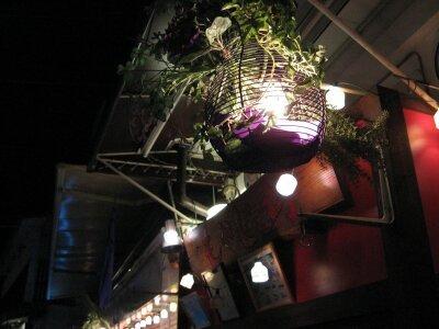 rich plum-夜の明かり