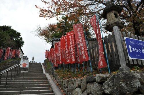 rich plum-奈良公園入り口