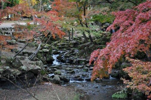 rich plum-二月堂参道手前の川