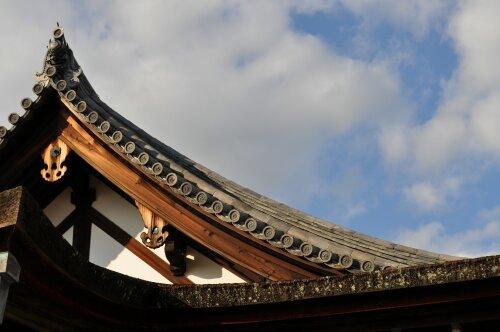 rich plum-屋根