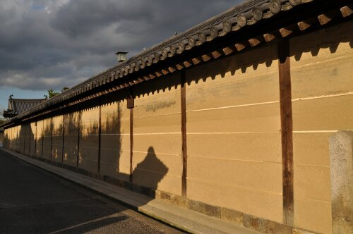 rich plum-塀