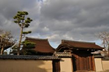 rich plum-太子殿の屋根