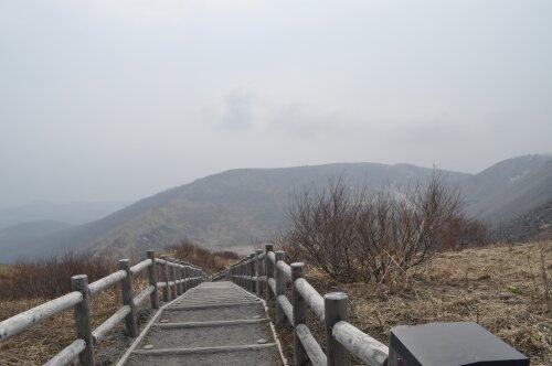 rich plum-外輪山の遊歩道