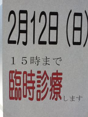 IMG_0820.jpg