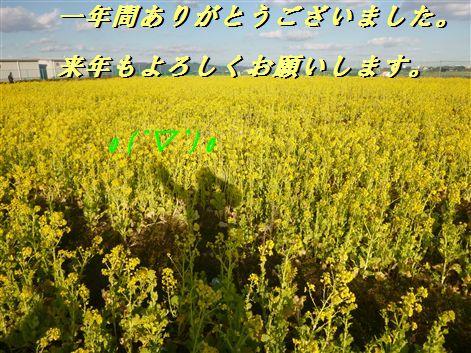 2013122920_R.jpg