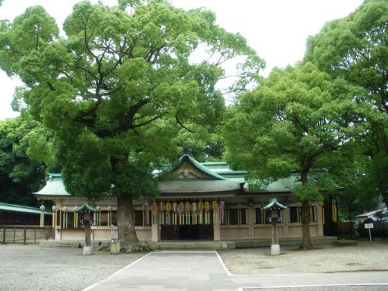 hatori002.jpg