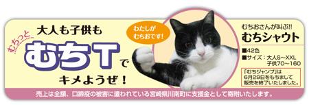 muti_T.jpg