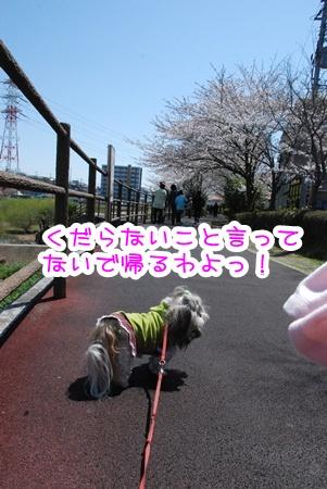 DSC_8983.jpg