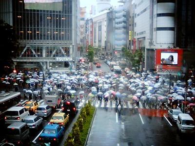 雨の渋谷駅前交差点:Entry