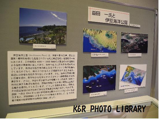 伊豆海洋公園について
