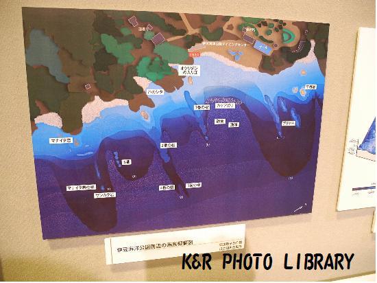 伊豆海洋公園地形