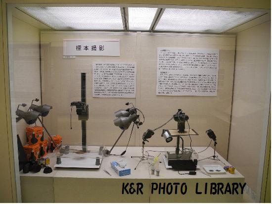 標本撮影機材