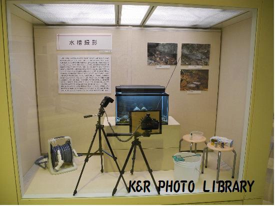 水槽撮影機材