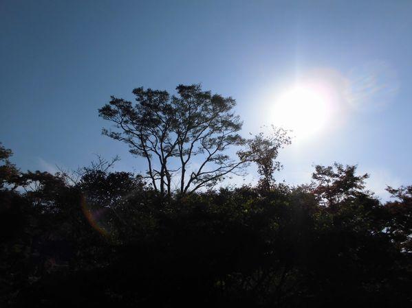 the_sun001.jpg
