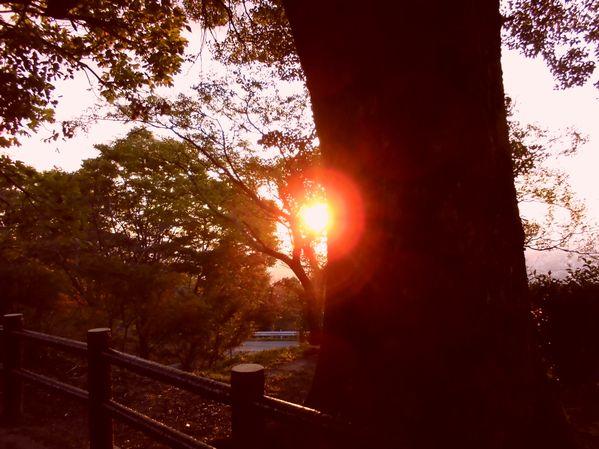 the_sun002.jpg