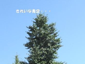 120822-4