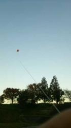 人生初 揚がった凧