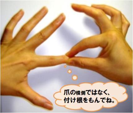 20110428_爪もみの方法