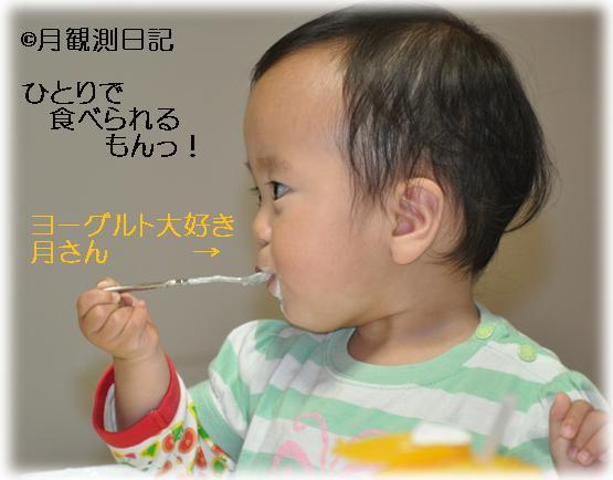20110530tsuki1.jpg
